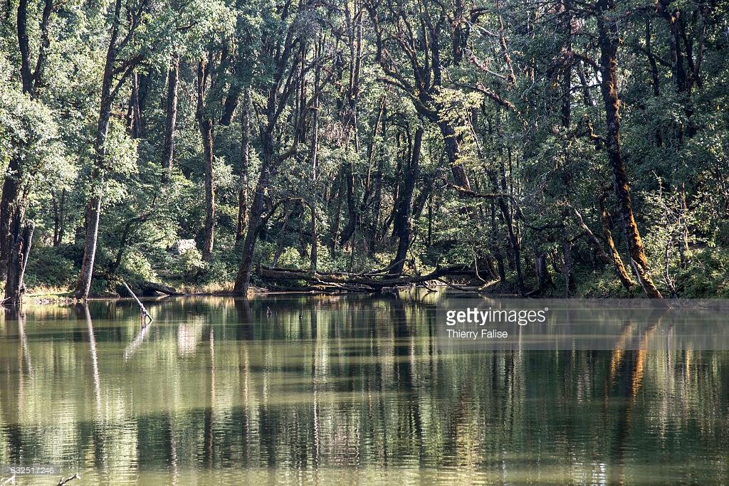 Nachiketa Lake in Uttarkashi